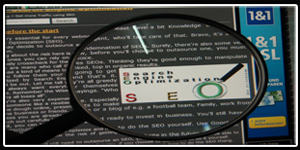 SEO Magnifying Tool