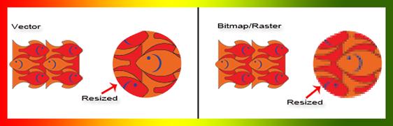 vector_bitmap